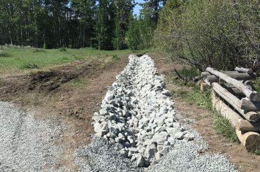Burke Creek/Rabe Meadow Riparian Restoration Project