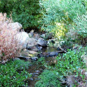 2010_9_22_Glenbrook-Creek-4