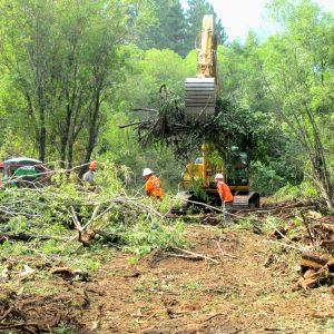 CG_excavator_moving_debris