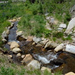 Stream Realignment S of Hwy 50