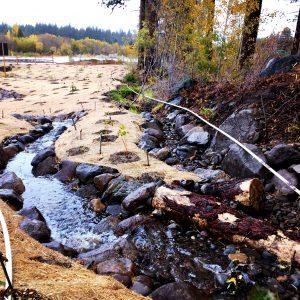 Upstream of Burke Creek