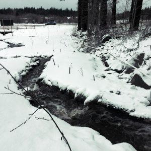 Burke Creek in the Winter