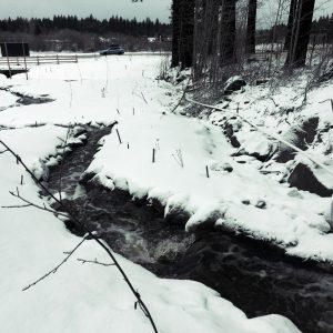 Burke Creek in the Winter