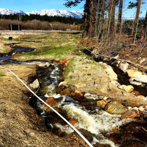 Burke Creek High Flow